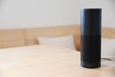 Shoppers Embrace Voice Devices for Product Searches